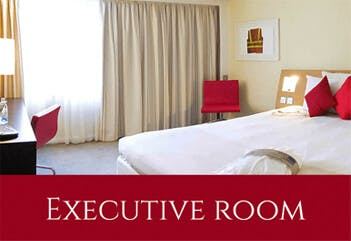 Novotel Executive room Newcastle airport hotel